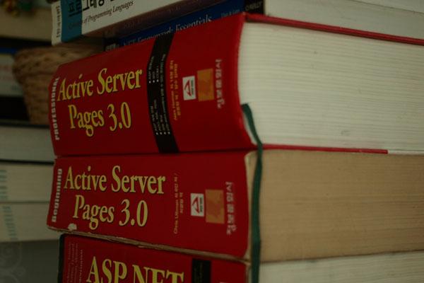 15년 가까이 가지고 있던 프로그래밍 서적들